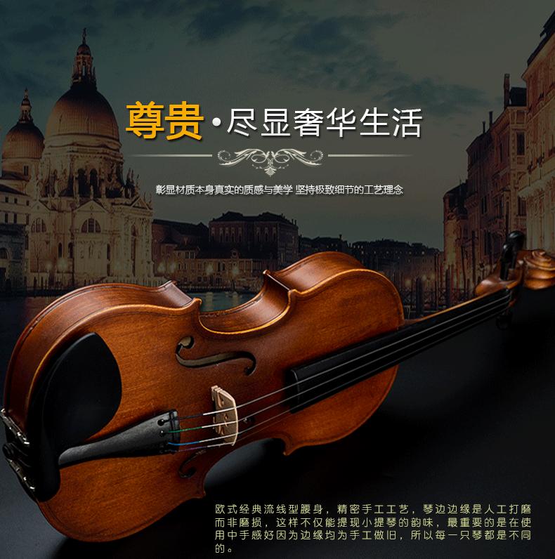 盛乐 小提琴怎么样,小提琴什么牌子好