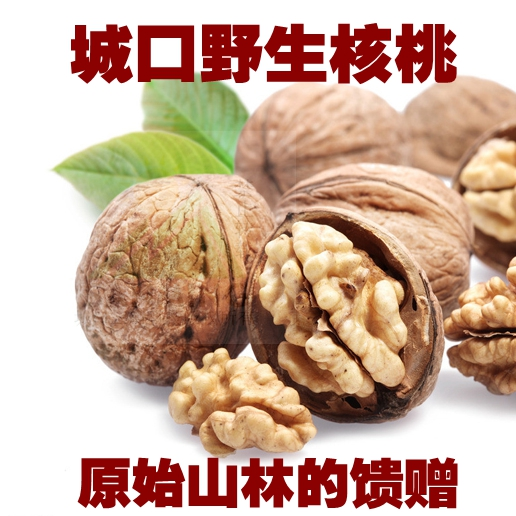 Chongqing Chengkou specialty wild firewood Kang roasted walnut hand peeled snack nut dried fruit hickory 500g package