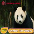 [沈阳森林动物园-大门票+熊猫馆门票]辽宁沈阳棋盘山动物园门票