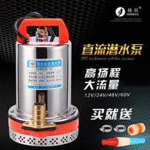 Царство хань перо 12V24V48V60V вольт постоянный ток дайвинг насос аккумуляторная батарея автомобиль насос электромобиль насос насос машинально высокий глава
