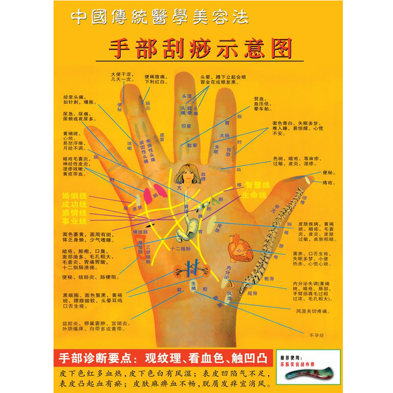 Traditional Chinese medicine health care wall chart hand scraping schematic diagram hand acupoint diagram traditional medical beauty Poster Sticker 48
