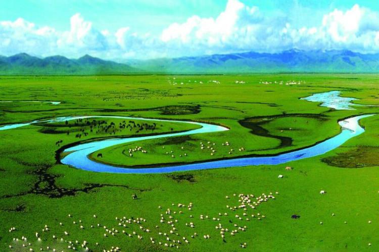 Inner Mongolia Xilingol prairie Saihanba ulaanbu grassland toad dam 3 day self driving pure play Tour