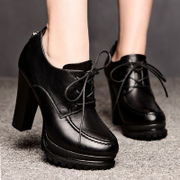 Shield Fox fall 2015 new coarse with thick-soled platform shoes high heel fashion England style casual shoes women's shoes
