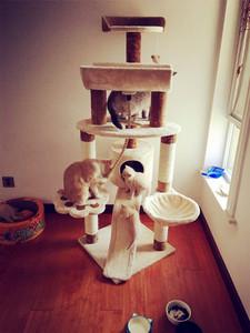 大型貓爬架多層貓窩貓爪板吊床劍麻繩玩具出口日本貓家具包郵