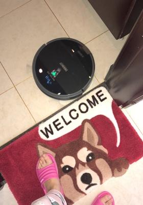 后悔买科沃斯扫地机器人智能家用全自动一体拖地超薄吸尘器规划洗地DF45评测评价怎么样