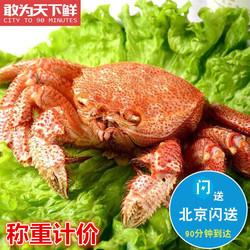 1只2斤重  俄罗斯进口超大红毛蟹鲜活海鲜日料食材水产