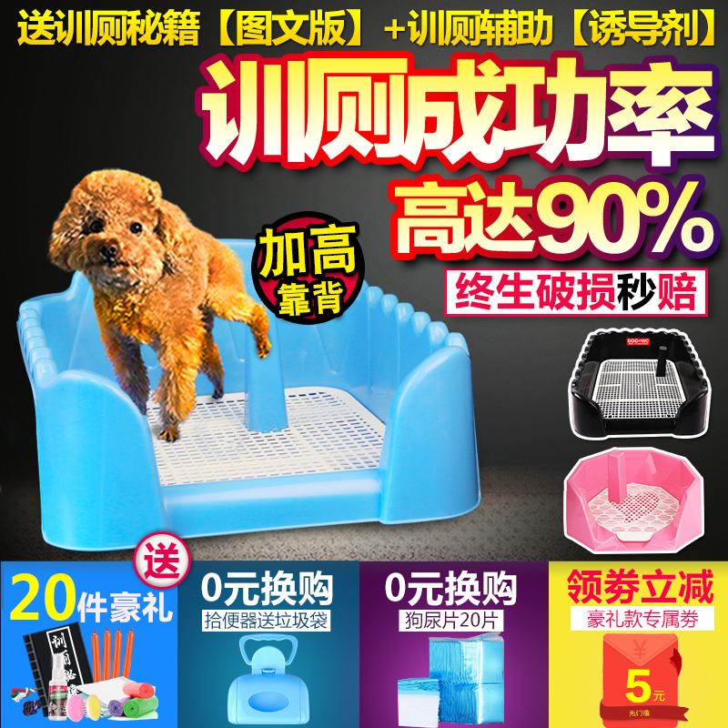 Собака туалет тедди соотношение медведь домашнее животное собака статьи собака моча бассейн затем бассейн мужчина и женщина в небольших собак золото длинные волосы тай собаки