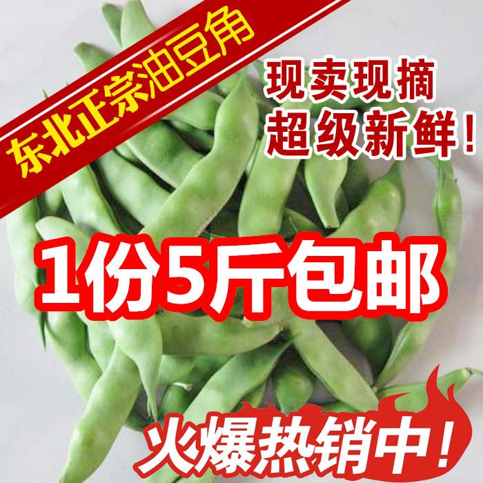 油豆角东北特产油豆角开锅烂面豆角新鲜蔬菜 现摘现发一份5斤包邮