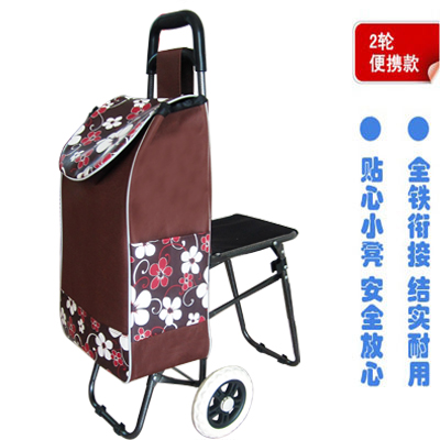 便携折叠购物车老年人买菜车小拉车带椅带凳超市购物车拉杆车旅行