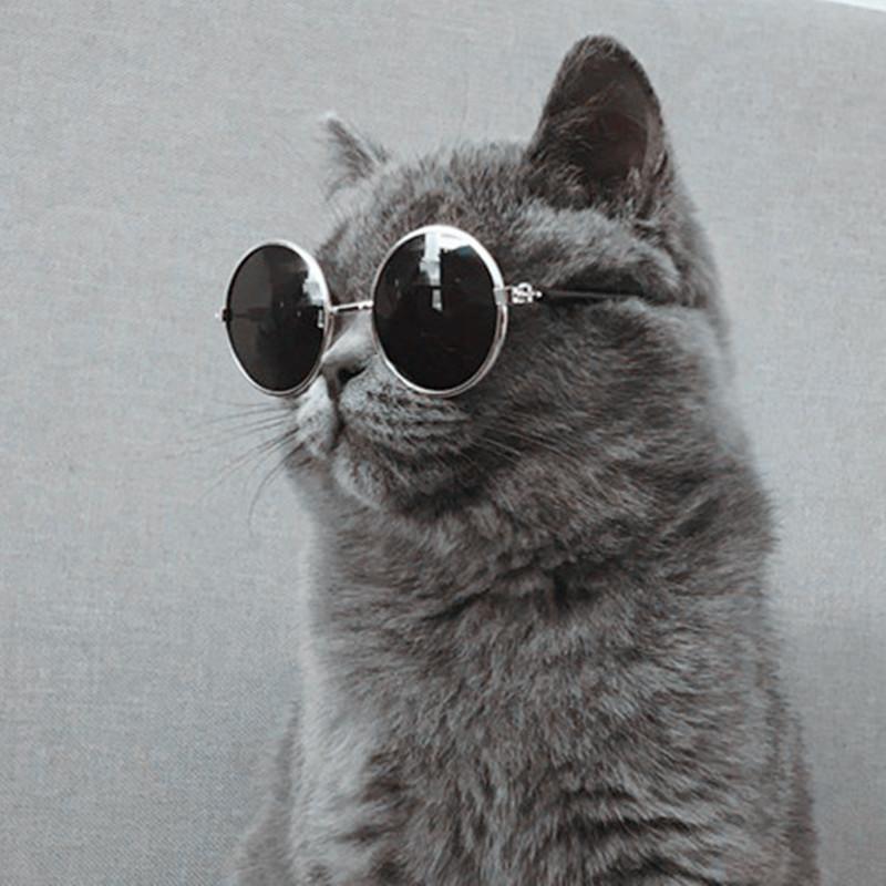 【 каждый день специальное предложение 】 домашнее животное собака китти темные очки очки домашнее животное очки китти очки