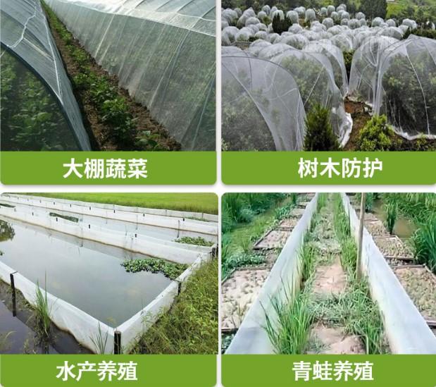 果樹園養殖網ブドウは無花果養鶏網防虫網果樹防烏網を栽培する。保護ネットトマト