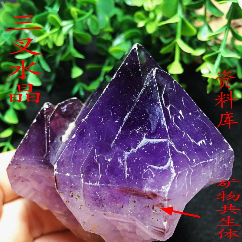 Natural amethyst original stone ornaments Amethyst Scepter master crystal energy stone database crystal one thing one picture