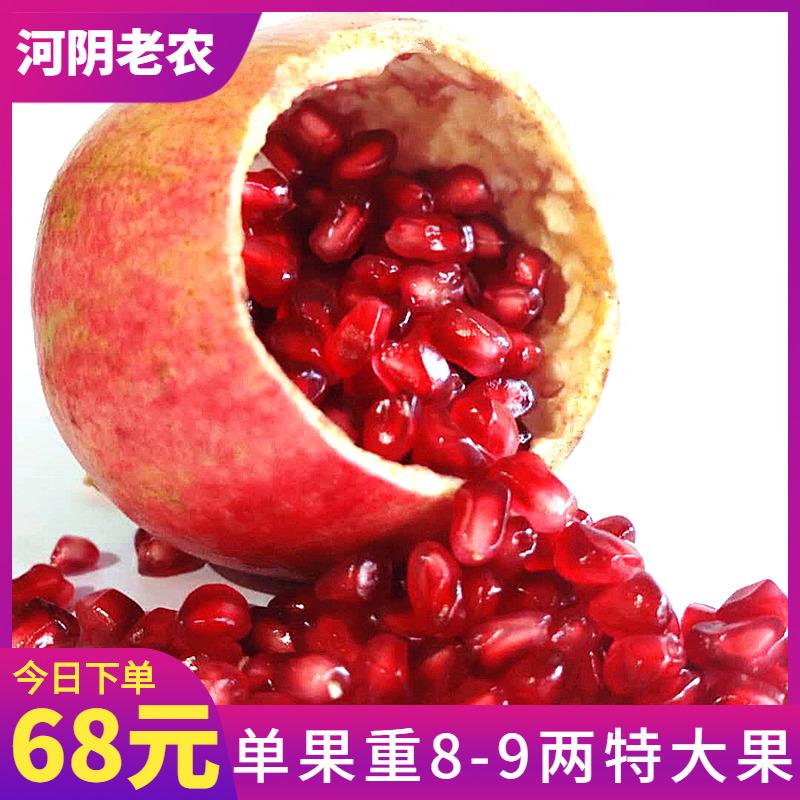 荥阳河阴老农突尼斯软籽石榴甜新鲜礼盒红宝石无子水果精品果大果