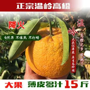 正宗温岭高橙玉环广柑台州新鲜橙子当季手剥水果孕妇整箱15斤装