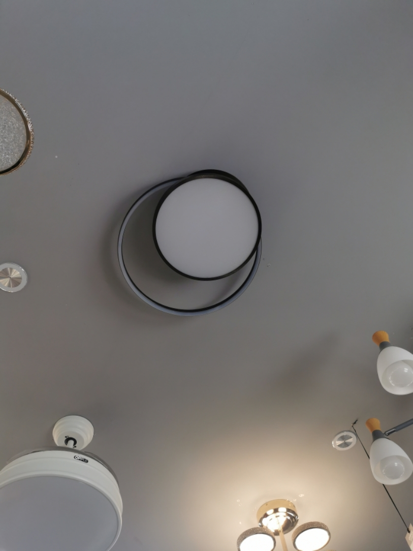 Opp 2021 new LED modern simple fashion personality bedroom study ceiling lamp eternal ring mzx4845