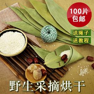 干粽叶包粽子的大粽子叶新鲜天然粽叶干粽子叶100张棕叶粽子 免邮