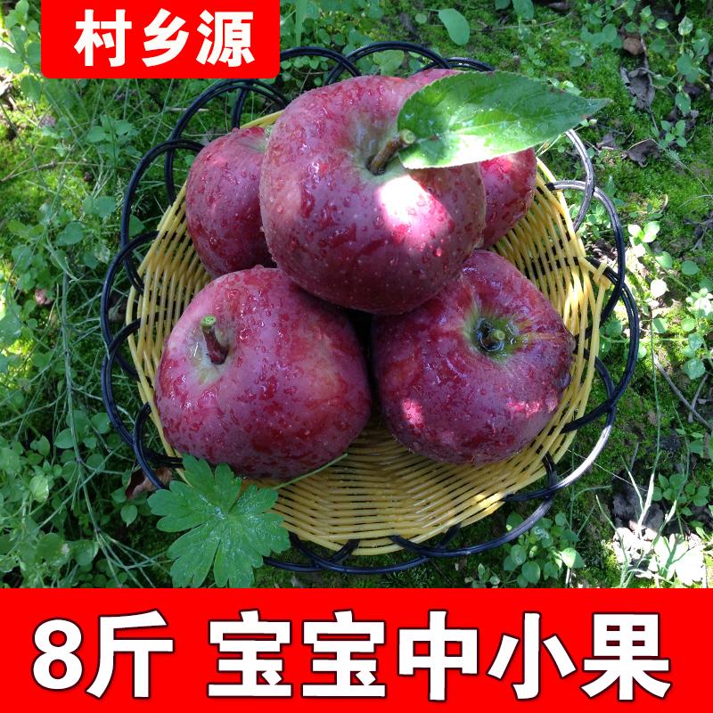 12-01新券花牛苹果水果礼县苹果花牛甜蛇果脆新鲜粉面苹果8斤当季孕妇