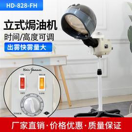 新款蒸汽机加热机发廊焗油机器家用理发店美发护理机加热帽营养机
