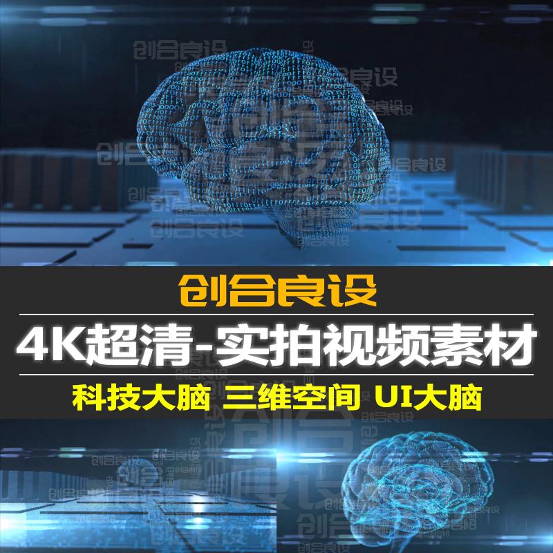 4K超清高科技三维空间AI智能人工大脑数据晶体PR短视频剪辑素材-视频素材-sucai.tv