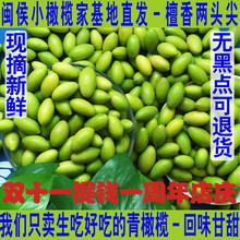 Сухофрукты и засахаренные фрукты > Оливки и маслины.