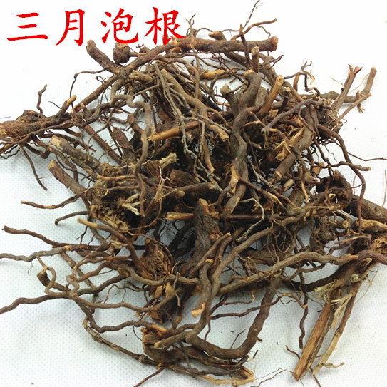 Fujian wild three-month bubble root thorn root grass plum root snake bubble tendon red plum with pure root dry goods 50g