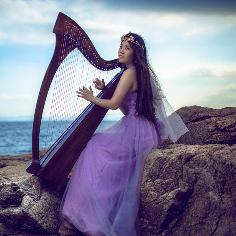 Новый универсальный ирландия арфа музыкальные инструменты группа гусли ремень штатив земля мелодия кельтский арфа 34 аккорд