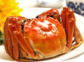现货固城湖大闸蟹大母蟹1.5两全母6只装鲜活母螃蟹红膏大闸蟹特价