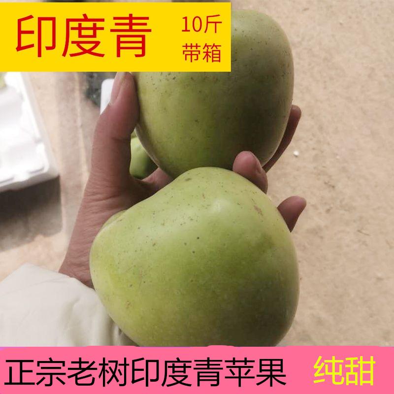 正宗老式印度青苹果老树新鲜水果10斤带箱包邮印冬丑萍果农家脆甜