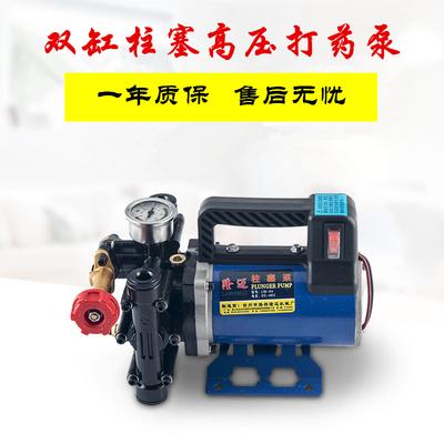 Portable sprayer agricultural electric fruit tree sprayer 12V48V60V220V high pressure double cylinder plunger drug pump