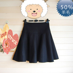 2015 autumn and winter woolen skirts high waist skirt umbrella skirt tutu skirt A word skirt pleated skirt bottoming