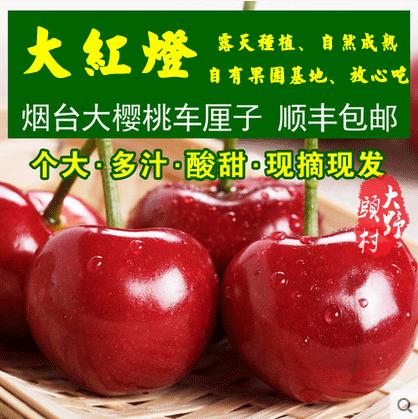 2019山东烟台大樱桃露天自家果园现摘现发大红灯10斤装新鲜水果车