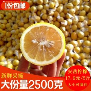 领3元券购买柠檬新鲜二三级柠檬黄柠檬5斤装柠檬水果 安岳新鲜柠檬非海南柠檬