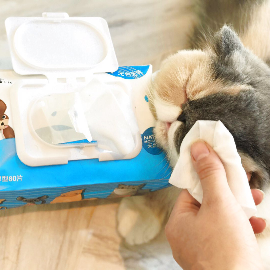 佩格小猫加厚型宠物湿巾80抽  清洁除臭去泪痕宠物湿纸巾特惠促销