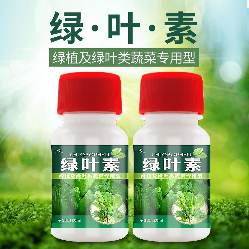 新款绿叶素黄叶一喷绿小叶卷叶微量元素叶面肥锌钙镁水溶肥花肥料