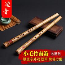 迪音一节南箫毛金竹南萧乐器专业演奏级短箫8孔GF调送箫包