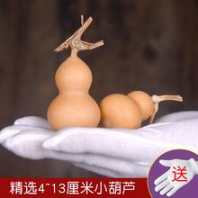 精品天然小美国葫芦手捻小葫芦龙头草里金文玩葫芦手把件辟邪风水