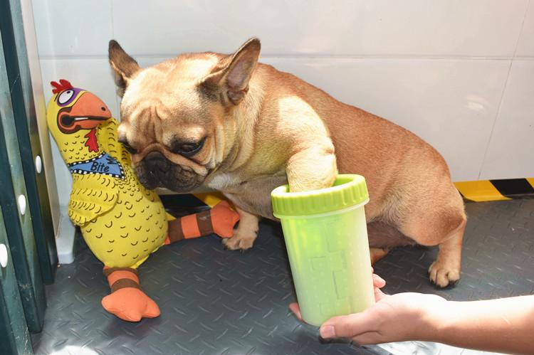 Сша DEXAS домашнее животное собака мыть таз для ног собака мыть лапа собака мыть ступня артефакт мыть ступня машинально мягкий силиконовый щетка