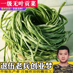 特级无叶贡菜新鲜苔干苔菜农家土特产干货脱水蔬菜干响菜500g包邮