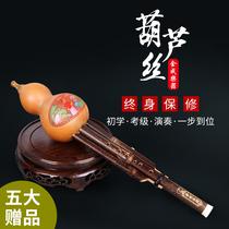 品调B黑檀木管降新云南东云葫芦丝乐器初学演奏天然葫芦红木管