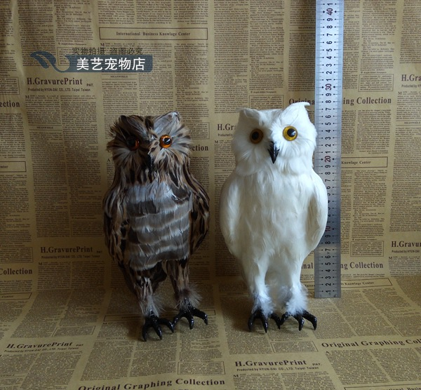 Simulation feather owl crafts feather bird specimen display photography props static model home furnishings