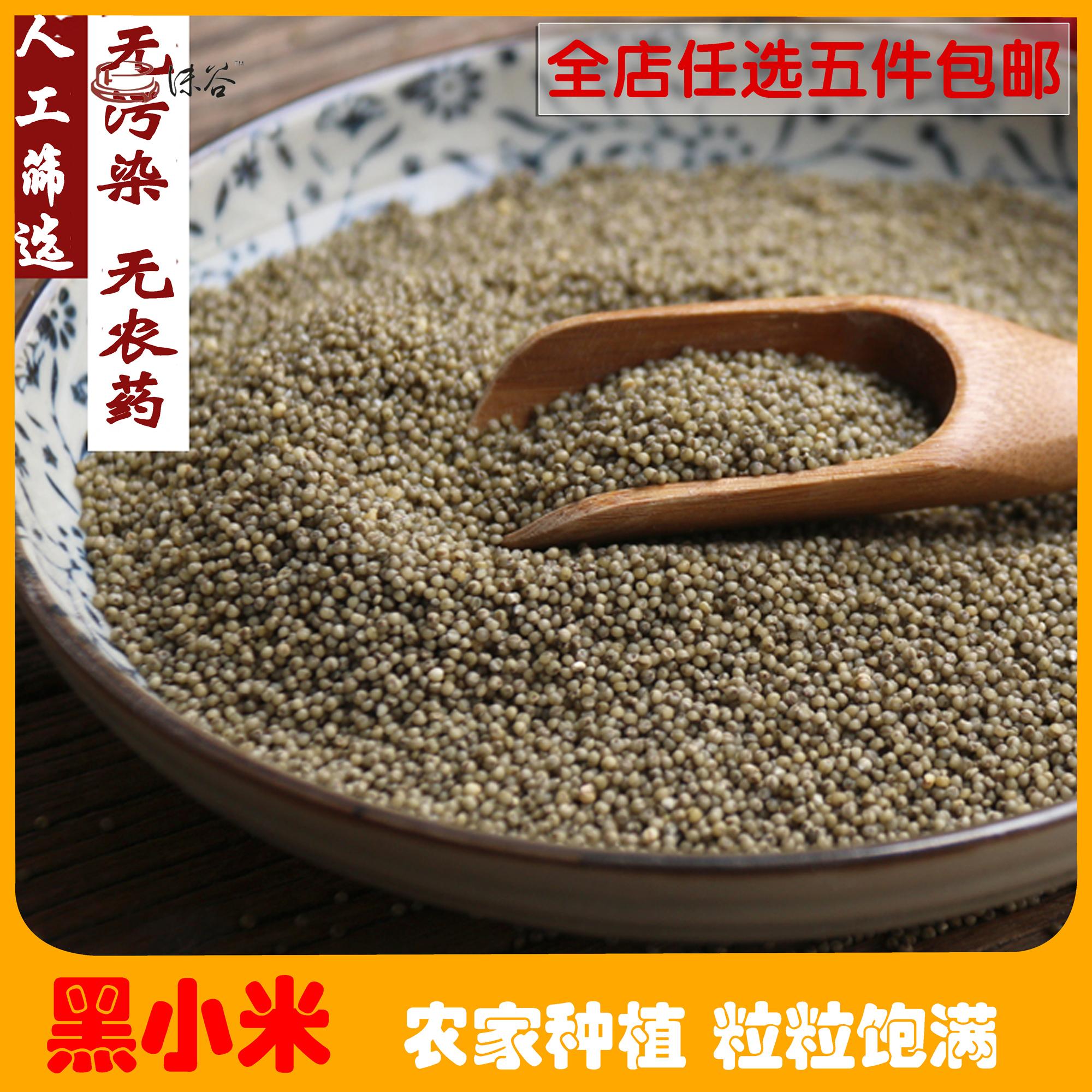 五谷小杂粮粗粮谷绿农品 黑小米 500g杂粮 宝宝辅食农家黑小米
