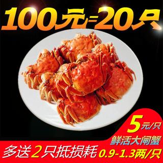 Крабы,  Эмблема неделю небольшой краб свежий живая большой тормоз краб 5 один только юаней [0.9-1.3 два ]20 только установлен краб пряный краб пьяный река краб, цена 1151 руб