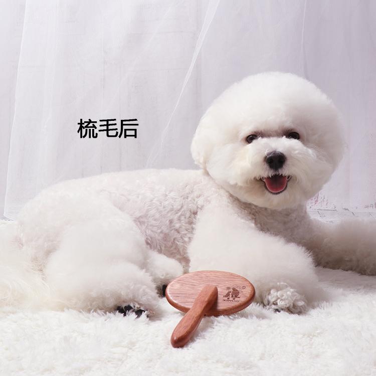 超好用! 宠物狗狗针梳拉毛梳子开结美容泰迪专用比熊猫咪毛刷用品