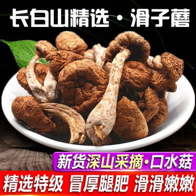 东北特产 滑子蘑滑子菇 干货小鸡炖蘑菇小黄蘑香菇类250g包邮