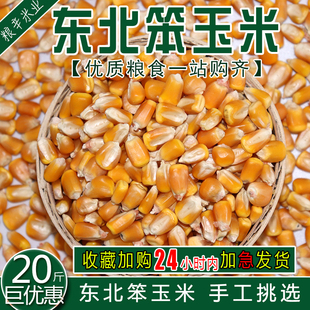 大粒干玉米酿酒喂鸽子粮杂粮新鲜20斤10kg装 东北农家玉米玉米粒