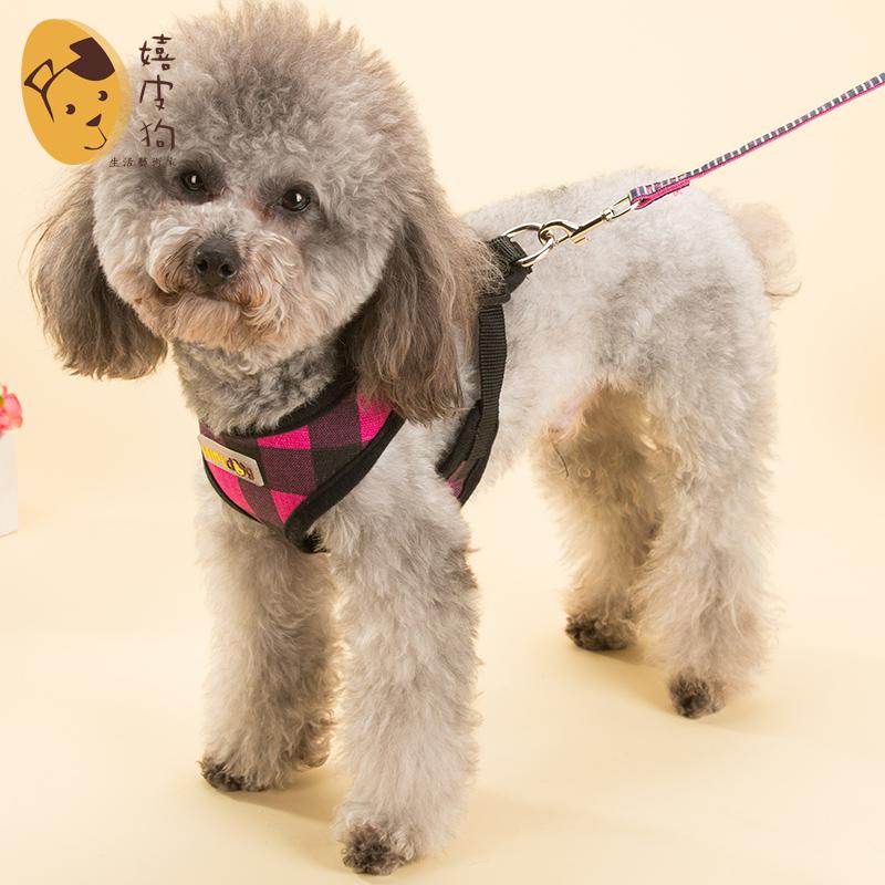 透氣格子背心牽引繩泰迪比熊小狗狗繩子寵物中小型犬遛狗繩胸背帶