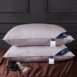 A pair of five-star hotel feather pillow 100 � goose down