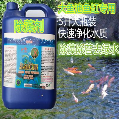 5l锦鲤鱼池褐藻绿藻清除剂除藻剂