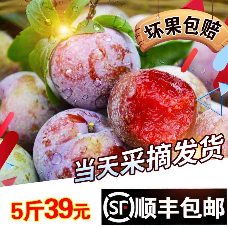新鲜水果红心李子新鲜三华李 广东酸脆李孕妇5斤装顺丰