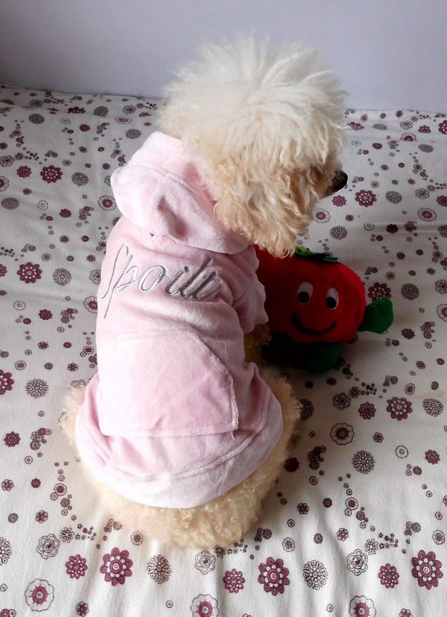 Pet clothing dog spring clothes dog clothes Pink Velvet quality is very good, only s size